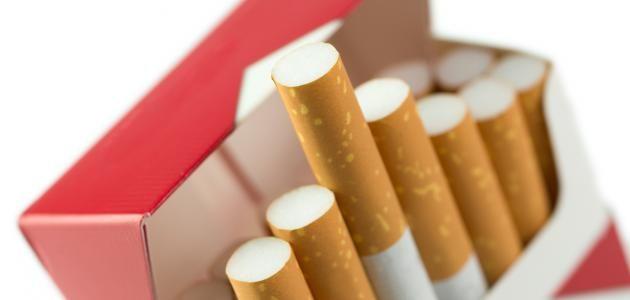 شعبة الدخان تعلن زيادة اسعار السجائر