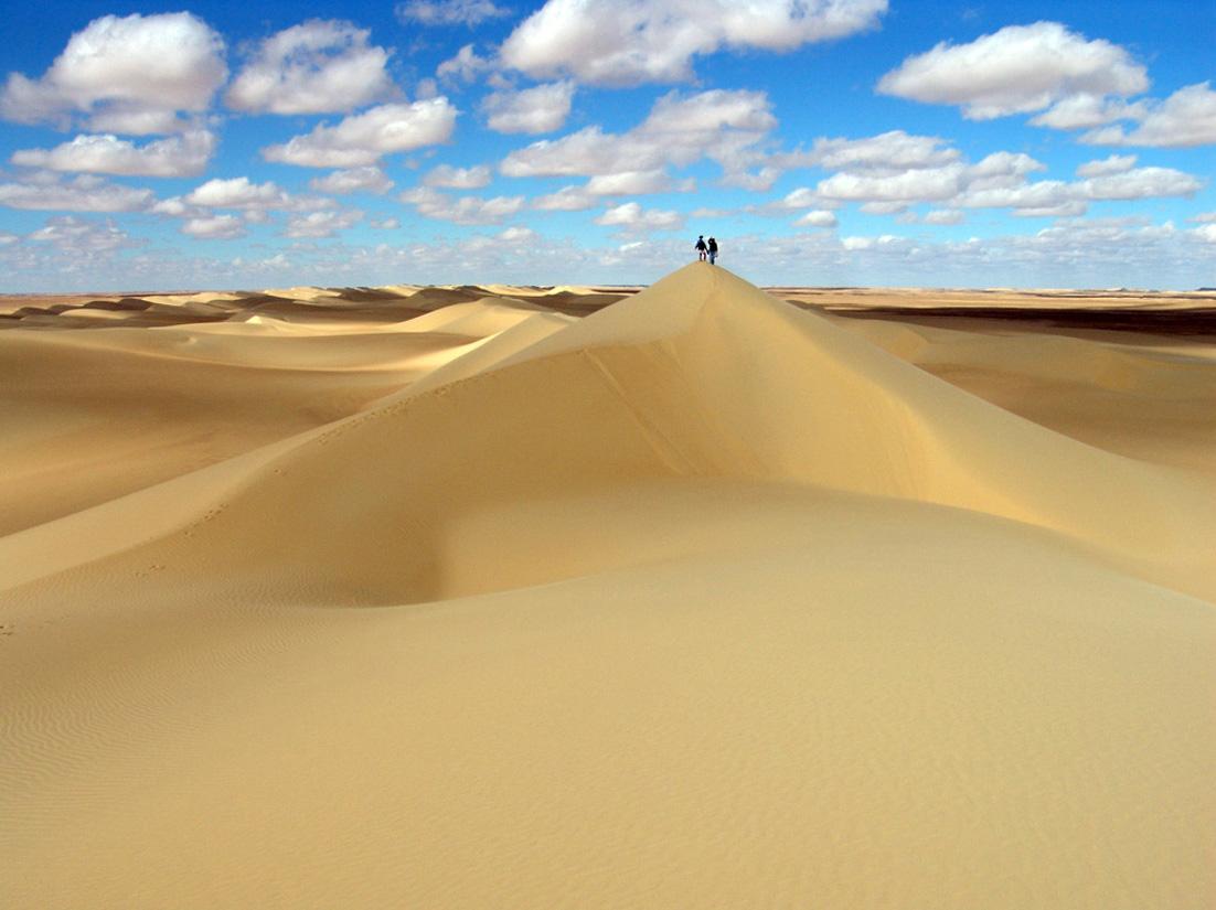 اسعار الرمل اليوم فى مصر
